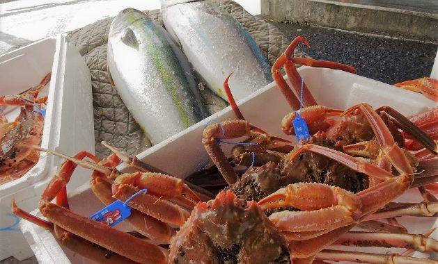 魚を食べよう