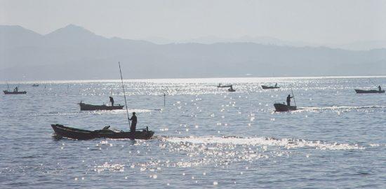 シジミ漁1