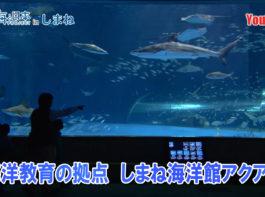 海洋教育の拠点 しまね海洋館アクアスYoutube